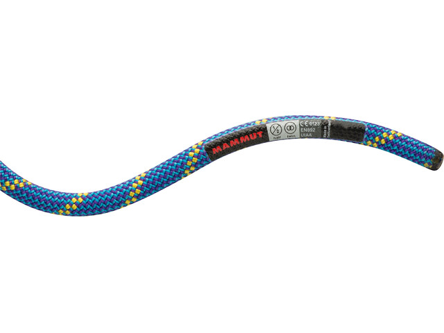 Mammut 8.0 Phoenix Dry Rope 70m blue